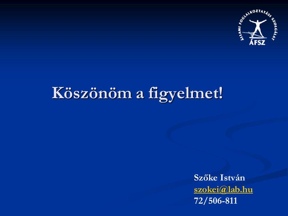 Köszönöm a figyelmet! Szőke István szokei@lab.hu 72/506-811