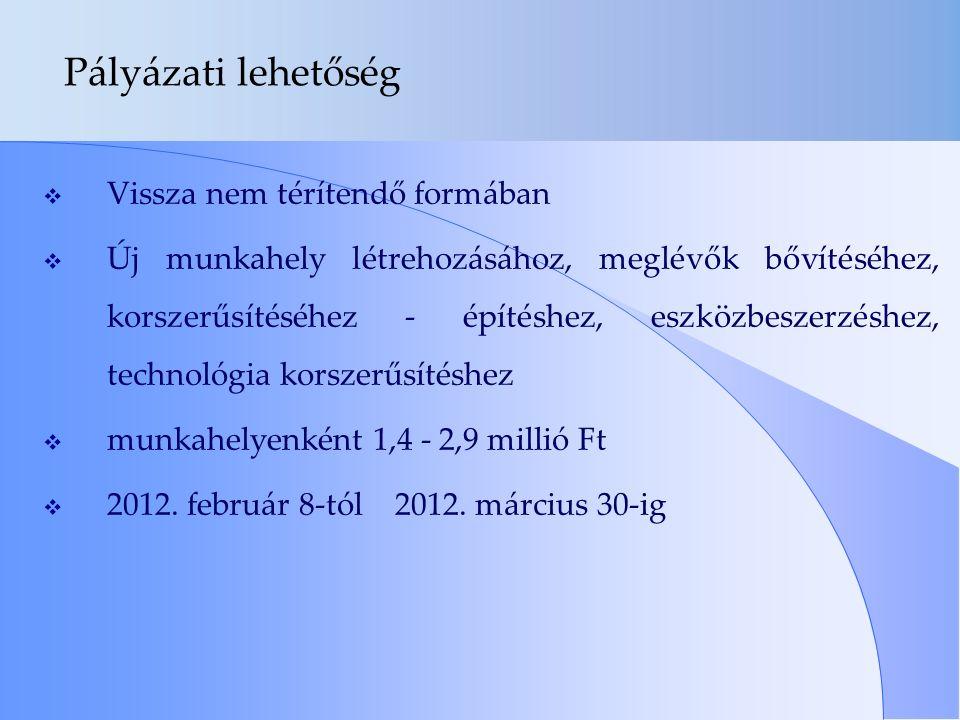 Pályázati lehetőség  Vissza nem térítendő formában  Új munkahely létrehozásához, meglévők bővítéséhez, korszerűsítéséhez - építéshez, eszközbeszerzéshez, technológia korszerűsítéshez  munkahelyenként 1,4 - 2,9 millió Ft  2012.