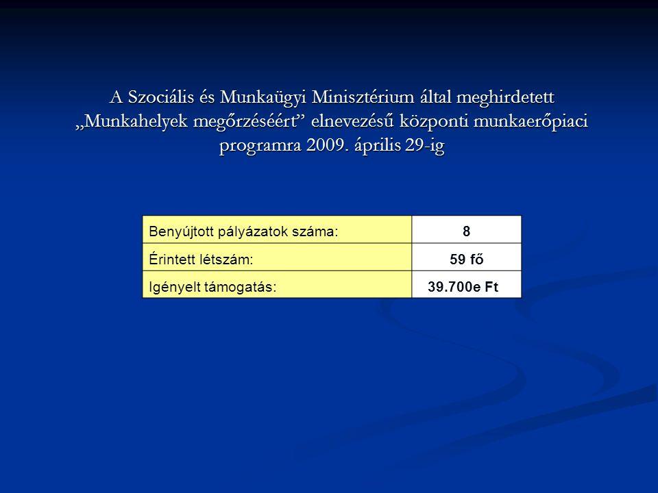 """A Szociális és Munkaügyi Minisztérium által meghirdetett """"Munkahelyek megőrzéséért"""" elnevezésű központi munkaerőpiaci programra 2009. április 29-ig Be"""