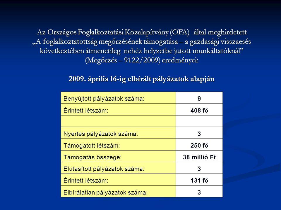 """Az Országos Foglalkoztatási Közalapítvány (OFA) által meghirdetett """"A foglalkoztatottság megőrzésének támogatása – a gazdasági visszaesés következtében átmenetileg nehéz helyzetbe jutott munkáltatóknál (Megőrzés – 9122/2009) eredményei: 2009."""