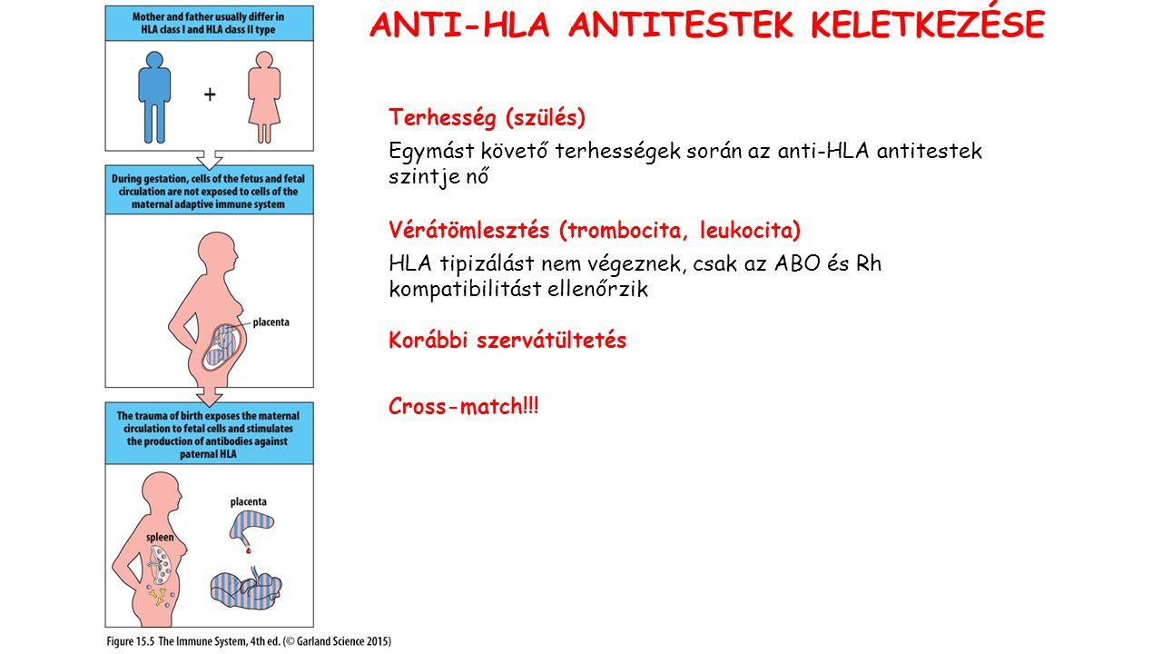 Terhesség (szülés) Egymást követő terhességek során az anti-HLA antitestek szintje nő Vérátömlesztés (trombocita, leukocita) HLA tipizálást nem végeznek, csak az ABO és Rh kompatibilitást ellenőrzik Korábbi szervátültetés Cross-match!!.