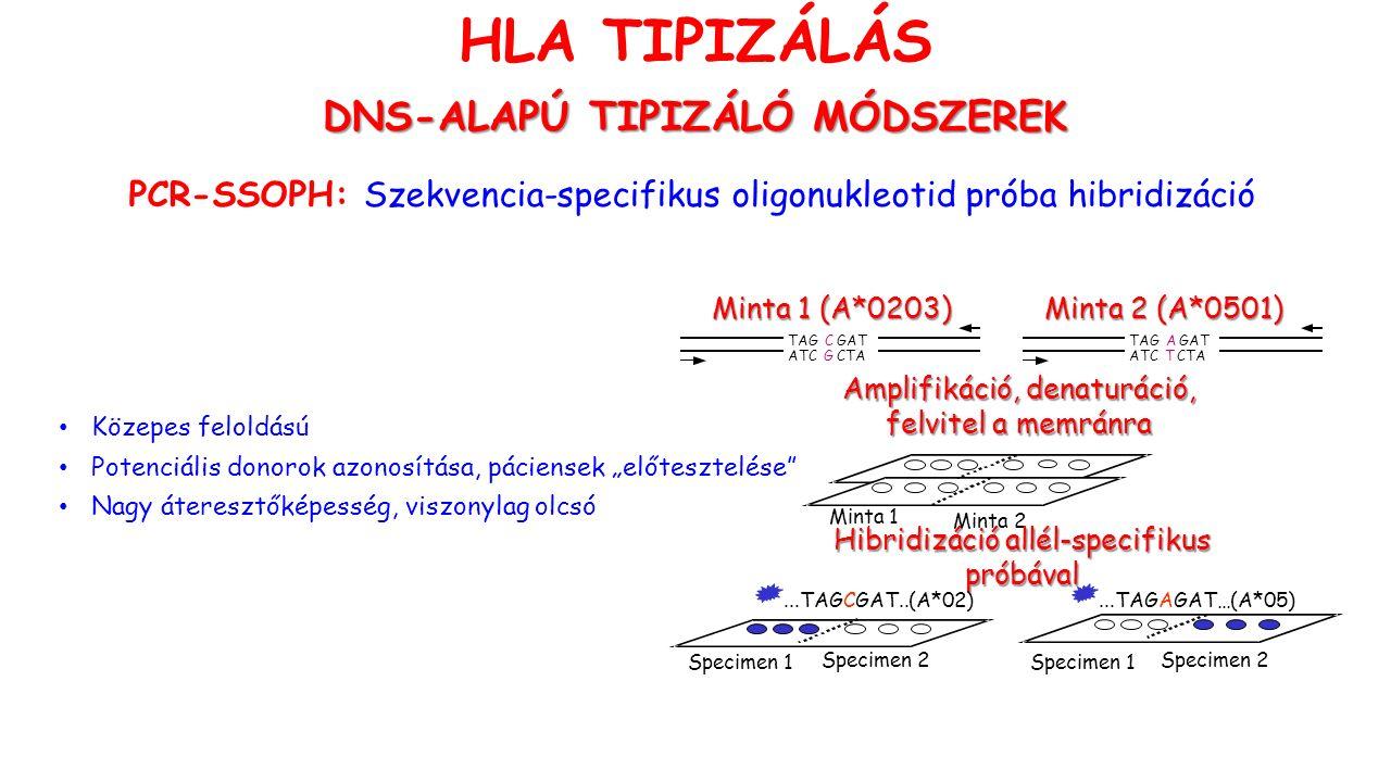 """HLA TIPIZÁLÁS DNS-ALAPÚ TIPIZÁLÓ MÓDSZEREK PCR-SSOPH: Szekvencia-specifikus oligonukleotid próba hibridizáció TAGCGAT ATCGCTA TAGAGAT ATCTCTA Minta 1 (A*0203) Minta 2 (A*0501) Minta 1 (A*0203) Minta 2 (A*0501) Amplifikáció, denaturáció, felvitel a memránra Minta 1 Minta 2 Hibridizáció allél-specifikus próbával...TAGCGAT..(A*02)...TAGAGAT…(A*05) Specimen 1 Specimen 2 Specimen 1 Specimen 2 Közepes feloldású Potenciális donorok azonosítása, páciensek """"előtesztelése Nagy áteresztőképesség, viszonylag olcsó"""