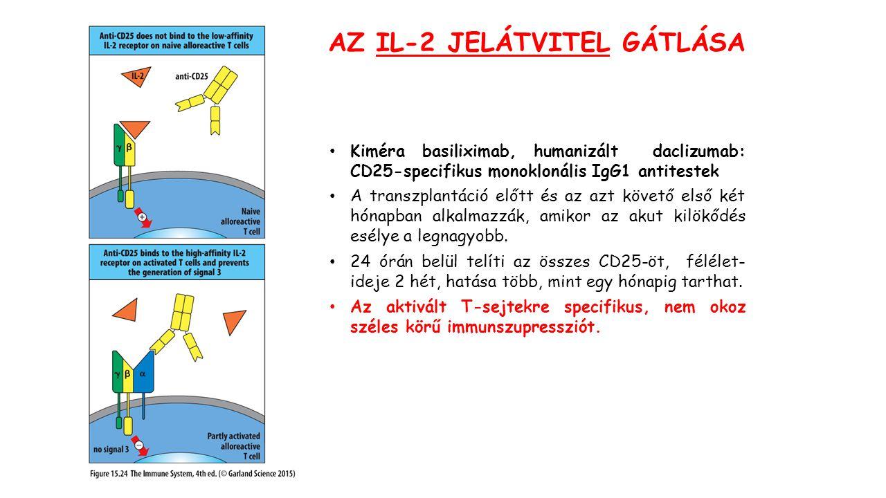 AZ IL-2 JELÁTVITEL GÁTLÁSA Kiméra basiliximab, humanizált daclizumab: CD25-specifikus monoklonális IgG1 antitestek A transzplantáció előtt és az azt követő első két hónapban alkalmazzák, amikor az akut kilökődés esélye a legnagyobb.