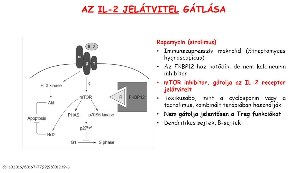 AZ IL-2 JELÁTVITEL GÁTLÁSA Rapamycin (sirolimus) Immunszupresszív makrolid (Streptomyces hygroscopicus) Az FKBP12-höz kötődik, de nem kalcineurin inhibitor mTOR inhibitor, gátolja az IL-2 receptor jelátvitelt Toxikusabb, mint a cyclosporin vagy a tacrolimus, kombinált terápiában használják Nem gátolja jelentősen a Treg funkciókat Dendritikus sejtek, B-sejtek doi:10.1016/S0167-7799(98)01239-6