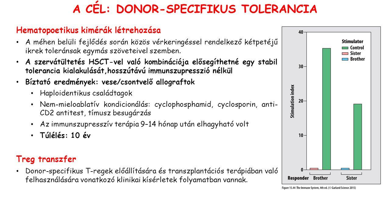 A CÉL: DONOR-SPECIFIKUS TOLERANCIA Hematopoetikus kimérák létrehozása A méhen belüli fejlődés során közös vérkeringéssel rendelkező kétpetéjű ikrek toleránsak egymás szöveteivel szemben.