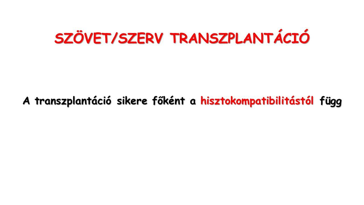SZÖVET/SZERV TRANSZPLANTÁCIÓ A transzplantáció sikere főként a hisztokompatibilitástól függ