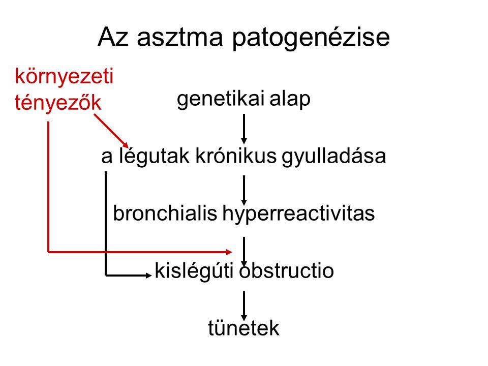 Az asztma patogenézise genetikai alap a légutak krónikus gyulladása bronchialis hyperreactivitas kislégúti obstructio tünetek környezeti tényezők