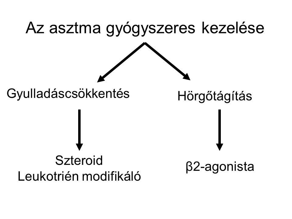 Az asztma gyógyszeres kezelése Szteroid Leukotrién modifikáló Gyulladáscsökkentés Hörgőtágítás β2-agonista