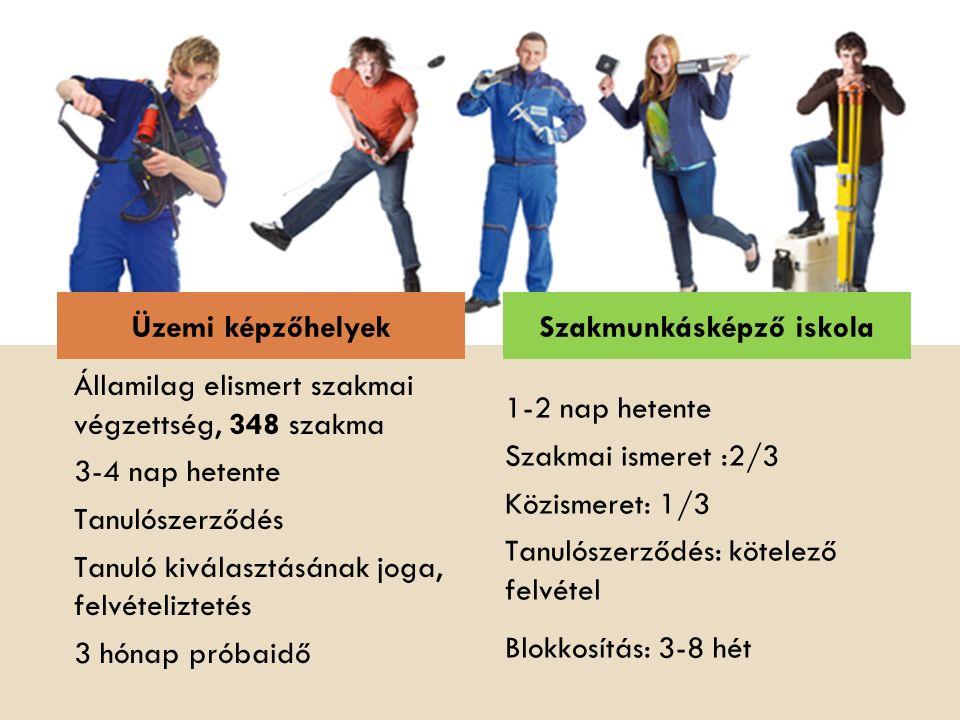 Államilag elismert szakmai végzettség, 348 szakma 3-4 nap hetente Tanulószerződés Tanuló kiválasztásának joga, felvételiztetés 3 hónap próbaidő 1-2 na