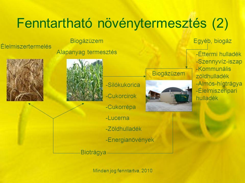 Minden jog fenntartva, 2010 Fenntartható növénytermesztés (2) Élelmiszertermelés Biogázüzem Alapanyag termesztés Egyéb, biogáz Biogázüzem -Silókukorica -Cukorcirok -Cukorrépa -Lucerna -Zöldhulladék -Energianövények Biotrágya -Éttermi hulladék -Szennyvíz-iszap -Kommunális zöldhulladék -Almos-hígtrágya -Élelmiszeripari hulladék