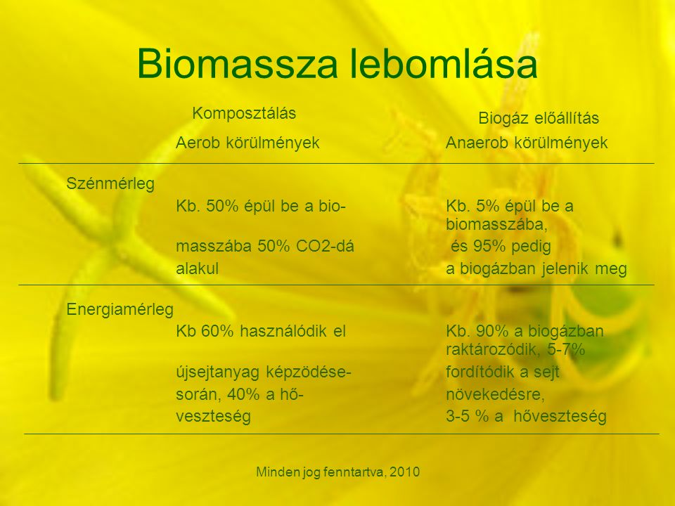 Minden jog fenntartva, 2010 Biomassza lebomlása Aerob körülmények Anaerob körülmények Szénmérleg Kb.
