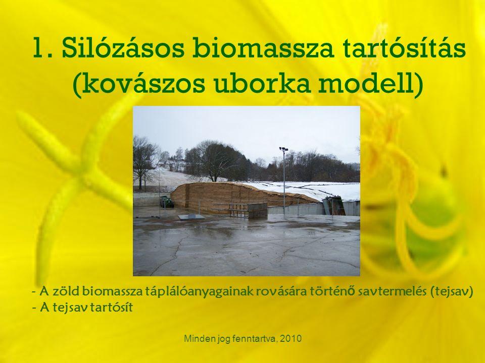 1. Silózásos biomassza tartósítás (kovászos uborka modell) Minden jog fenntartva, 2010 - A zöld biomassza táplálóanyagainak rovására történ ő savterme