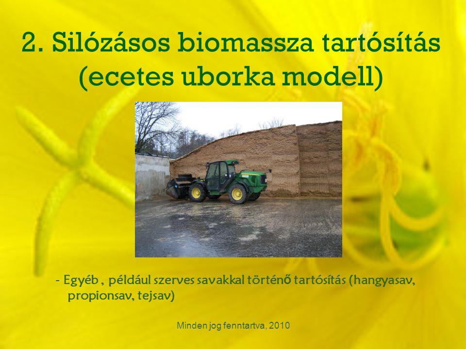 2. Silózásos biomassza tartósítás (ecetes uborka modell) Minden jog fenntartva, 2010 - Egyéb, például szerves savakkal történ ő tartósítás (hangyasav,