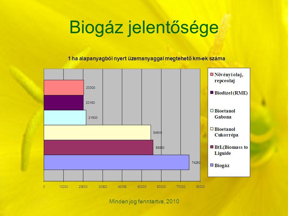 Minden jog fenntartva, 2010 Biogáz jelentősége
