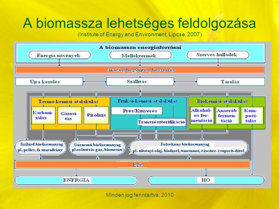 A biomassza lehetséges feldolgozása (Institute of Energy and Environment, Lipcse, 2007) Minden jog fenntartva, 2010
