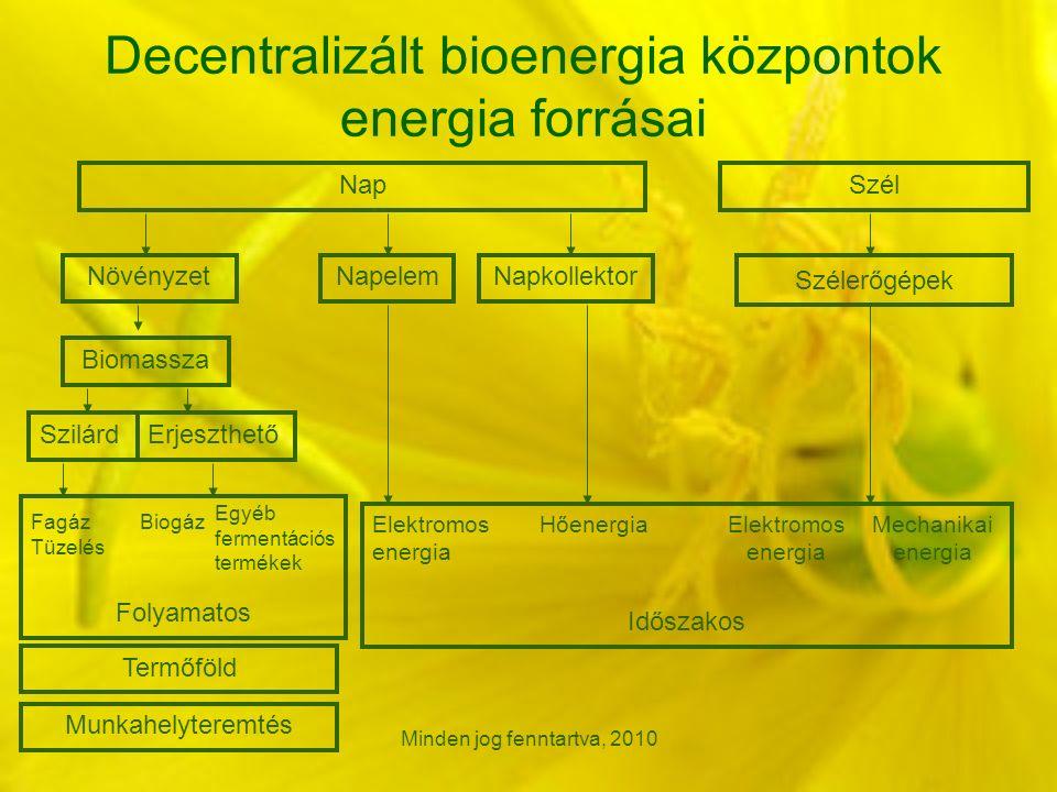 Minden jog fenntartva, 2010 Decentralizált bioenergia központok energia forrásai NapSzél Szélerőgépek Elektromos energia Mechanikai energia NövényzetNapelemNapkollektor Biomassza SzilárdErjeszthető HőenergiaElektromos energia Időszakos Fagáz Tüzelés Biogáz Egyéb fermentációs termékek Folyamatos Termőföld Munkahelyteremtés