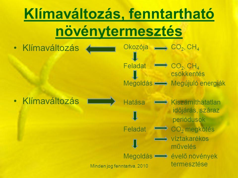 Klímaváltozás, fenntartható növénytermesztés Klímaváltozás OkozójaCO 2, CH 4 Feladat CO 2, CH 4 csökkentés MegoldásMegújuló energiák HatásaKiszámíthatatlan időjárás, száraz periódusok FeladatCO 2 megkötés víztakarékos művelés Megoldás évelő növények termesztése Minden jog fenntartva, 2010