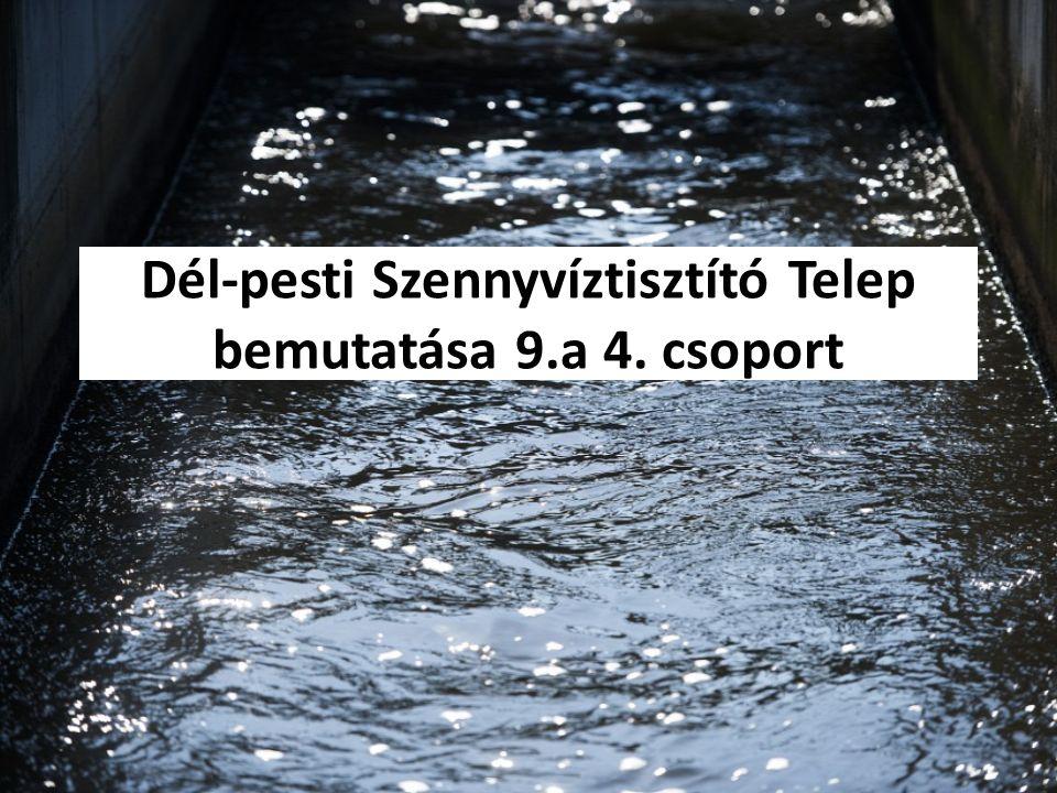 Dél-pesti Szennyvíztisztító Telep bemutatása 9.a 4. csoport