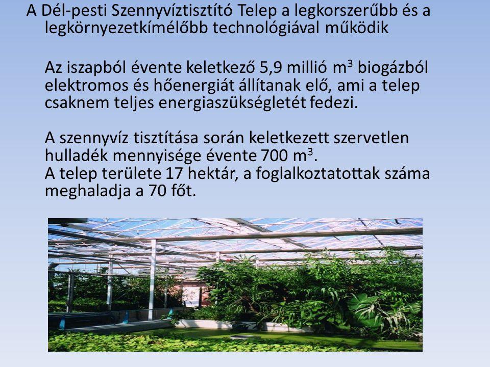 A Dél-pesti Szennyvíztisztító Telep a legkorszerűbb és a legkörnyezetkímélőbb technológiával működik Az iszapból évente keletkező 5,9 millió m 3 biogá
