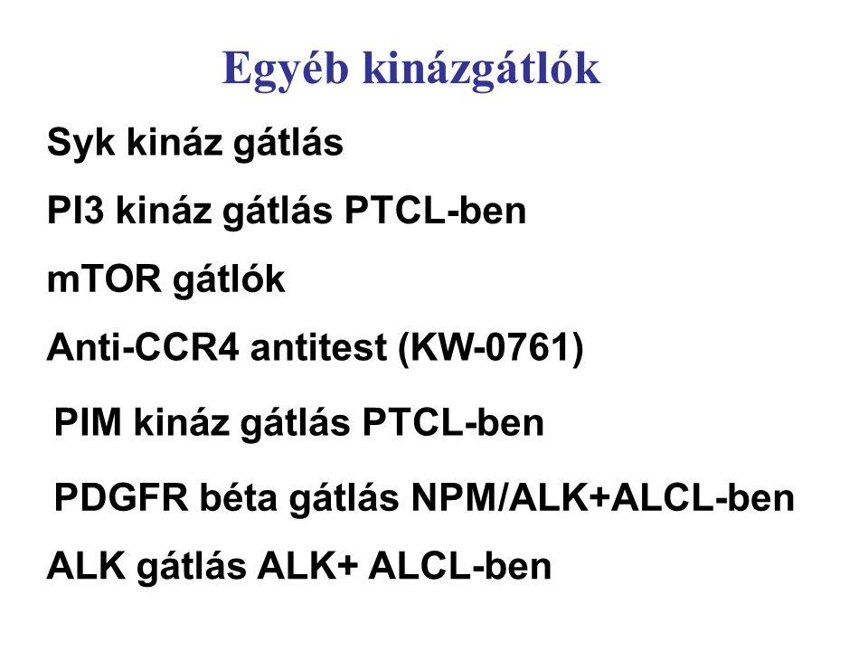 Syk kináz gátlás mTOR gátlók PIM kináz gátlás PTCL-ben PDGFR béta gátlás NPM/ALK+ALCL-ben PI3 kináz gátlás PTCL-ben Egyéb kinázgátlók ALK gátlás ALK+ ALCL-ben Anti-CCR4 antitest (KW-0761)