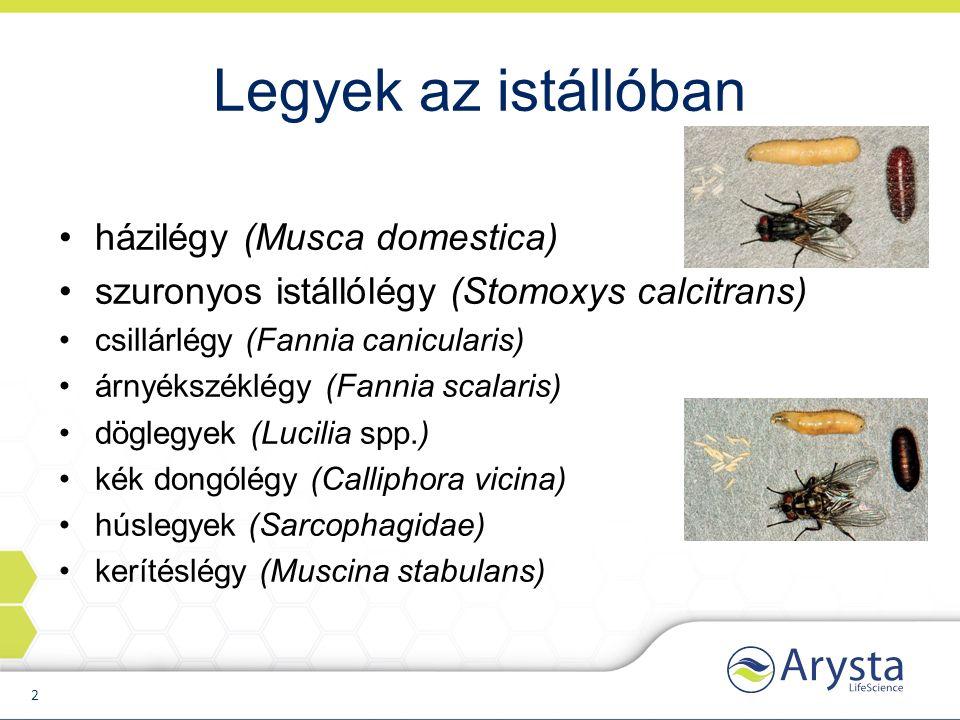 Legyek az istállóban házilégy (Musca domestica) szuronyos istállólégy (Stomoxys calcitrans) csillárlégy (Fannia canicularis) árnyékszéklégy (Fannia scalaris) döglegyek (Lucilia spp.) kék dongólégy (Calliphora vicina) húslegyek (Sarcophagidae) kerítéslégy (Muscina stabulans) 2