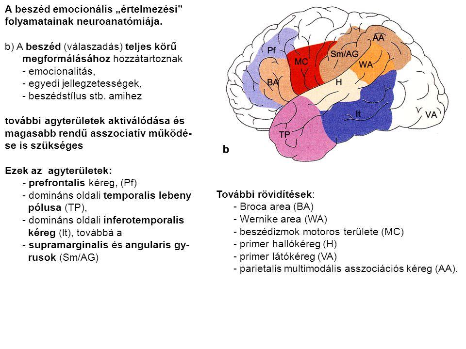 """A beszéd emocionális """"értelmezési"""" folyamatainak neuroanatómiája. b) A beszéd (válaszadás) teljes körű megformálásához hozzátartoznak - emocionalitás,"""