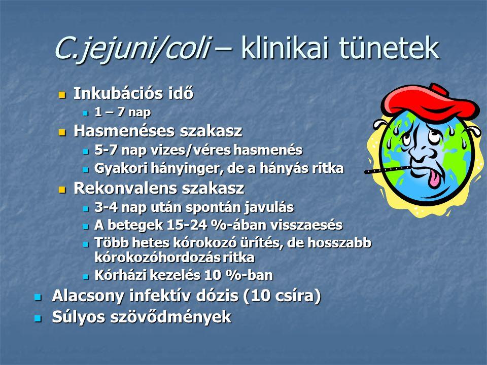 C.jejuni/coli – klinikai tünetek Inkubációs idő Inkubációs idő 1 – 7 nap 1 – 7 nap Hasmenéses szakasz Hasmenéses szakasz 5-7 nap vizes/véres hasmenés 5-7 nap vizes/véres hasmenés Gyakori hányinger, de a hányás ritka Gyakori hányinger, de a hányás ritka Rekonvalens szakasz Rekonvalens szakasz 3-4 nap után spontán javulás 3-4 nap után spontán javulás A betegek 15-24 %-ában visszaesés A betegek 15-24 %-ában visszaesés Több hetes kórokozó ürítés, de hosszabb kórokozóhordozás ritka Több hetes kórokozó ürítés, de hosszabb kórokozóhordozás ritka Kórházi kezelés 10 %-ban Kórházi kezelés 10 %-ban Alacsony infektív dózis (10 csíra) Alacsony infektív dózis (10 csíra) Súlyos szövődmények Súlyos szövődmények