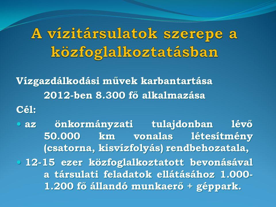 Vízgazdálkodási művek karbantartása 2012-ben 8.300 fő alkalmazása Cél: az önkormányzati tulajdonban lévő 50.000 km vonalas létesítmény (csatorna, kisvízfolyás) rendbehozatala, az önkormányzati tulajdonban lévő 50.000 km vonalas létesítmény (csatorna, kisvízfolyás) rendbehozatala, 12-15 ezer közfoglalkoztatott bevonásával a társulati feladatok ellátásához 1.000- 1.200 fő állandó munkaerő + géppark.