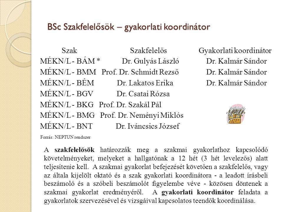 BSc Szakfelelősök – gyakorlati koordinátor Szak Szakfelelős Gyakorlati koordinátor MÉKN/L - BÁM * Dr.