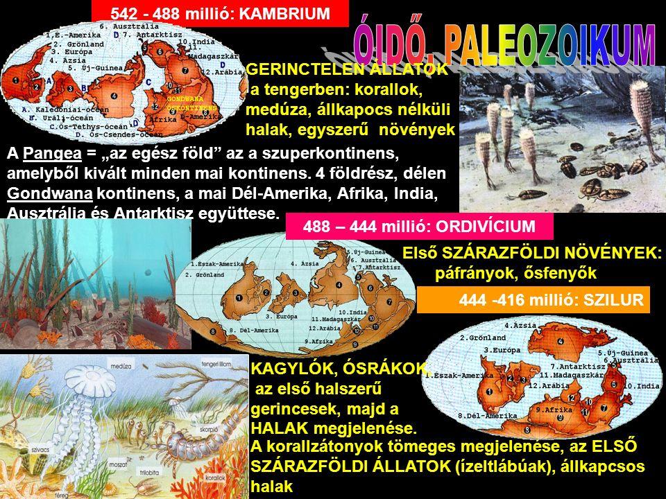 """444 -416 millió: SZILUR 542 - 488 millió: KAMBRIUM GERINCTELEN ÁLLATOK a tengerben: korallok, medúza, állkapocs nélküli halak, egyszerű növények A Pangea = """"az egész föld az a szuperkontinens, amelyből kivált minden mai kontinens."""