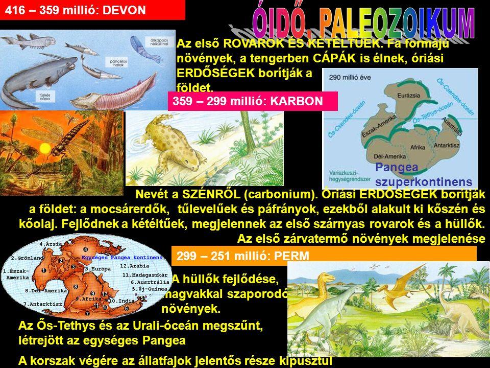 Pangea szuperkontinens 299 – 251 millió: PERM 416 – 359 millió: DEVON Nevét a SZÉNRŐL (carbonium).