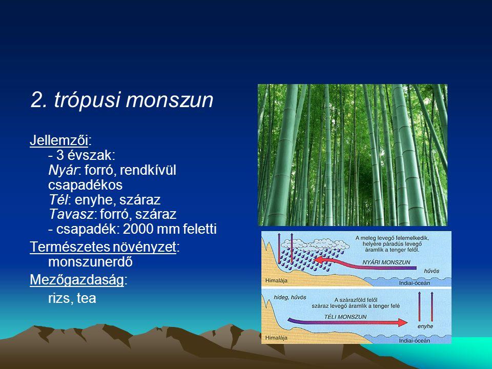 2. trópusi monszun Jellemzői: - 3 évszak: Nyár: forró, rendkívül csapadékos Tél: enyhe, száraz Tavasz: forró, száraz - csapadék: 2000 mm feletti Termé