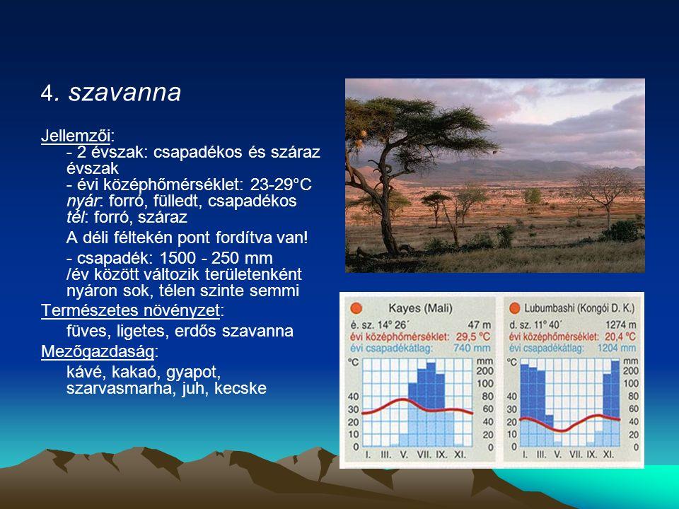 4. szavanna Jellemzői: - 2 évszak: csapadékos és száraz évszak - évi középhőmérséklet: 23-29°C nyár: forró, fülledt, csapadékos tél: forró, száraz A d