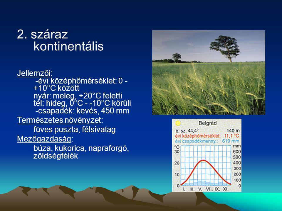 2. száraz kontinentális Jellemzői: -évi középhőmérséklet: 0 - +10°C között nyár: meleg, +20°C feletti tél: hideg, 0°C - -10°C körüli -csapadék: kevés,