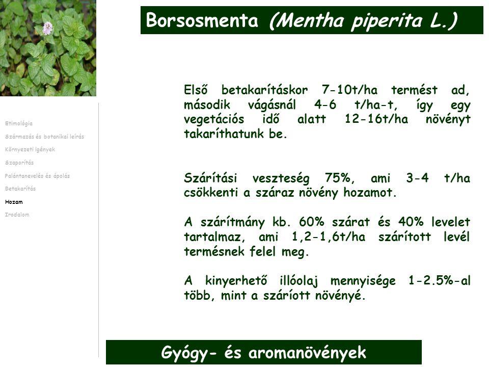 Első betakarításkor 7-10t/ha termést ad, második vágásnál 4-6 t/ha-t, így egy vegetációs idő alatt 12-16t/ha növényt takaríthatunk be.