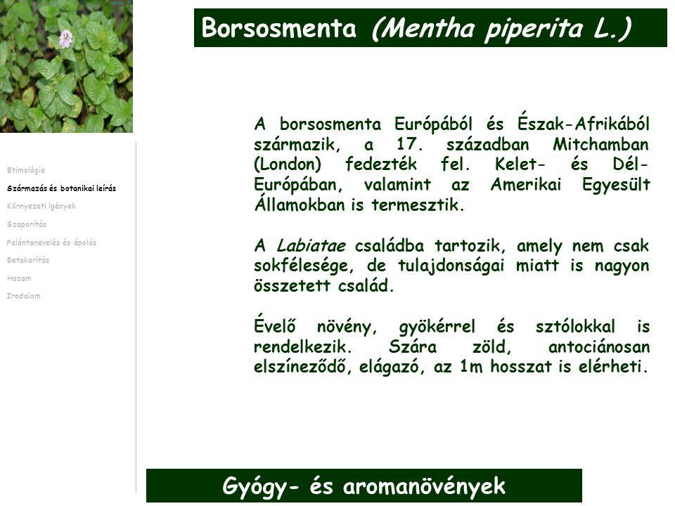 1.táblázat – A borsosmenta kártevői és kórokozói.