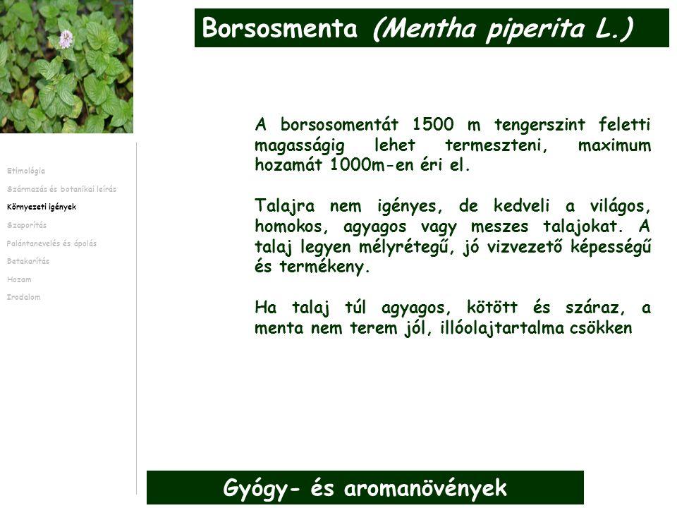 A borsosomentát 1500 m tengerszint feletti magasságig lehet termeszteni, maximum hozamát 1000m-en éri el.