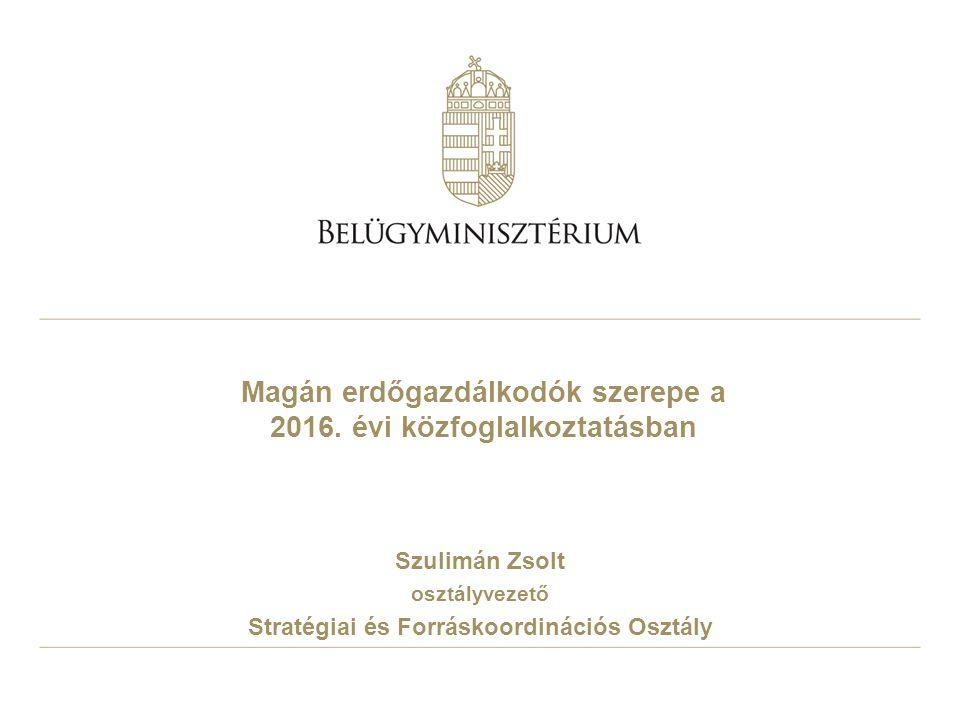 Magán erdőgazdálkodók szerepe a 2016. évi közfoglalkoztatásban Szulimán Zsolt osztályvezető Stratégiai és Forráskoordinációs Osztály