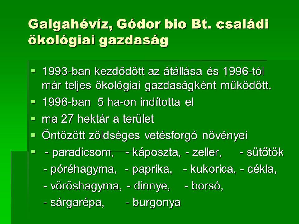Galgahévíz, Gódor bio Bt.