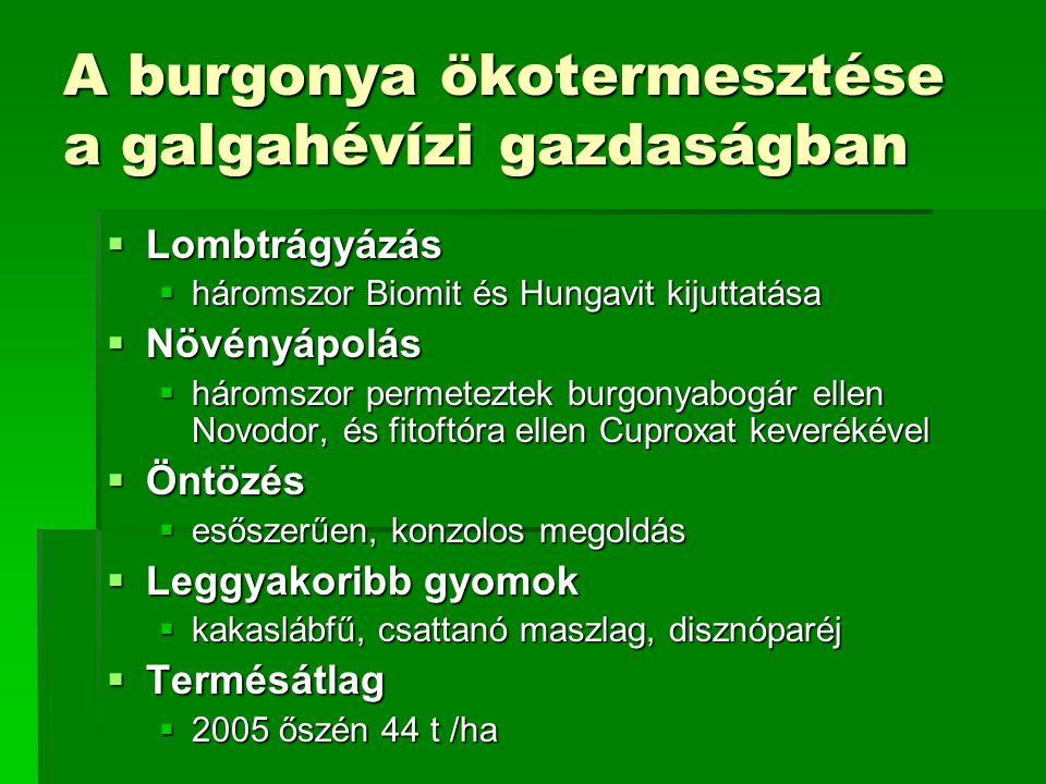 A burgonya ökotermesztése a galgahévízi gazdaságban  Lombtrágyázás  háromszor Biomit és Hungavit kijuttatása  Növényápolás  háromszor permeteztek burgonyabogár ellen Novodor, és fitoftóra ellen Cuproxat keverékével  Öntözés  esőszerűen, konzolos megoldás  Leggyakoribb gyomok  kakaslábfű, csattanó maszlag, disznóparéj  Termésátlag  2005 őszén 44 t /ha