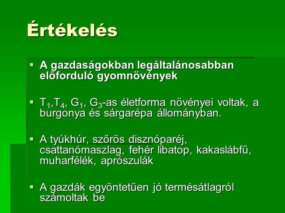 Értékelés  A gazdaságokban legáltalánosabban előforduló gyomnövények  T 1,T 4, G 1, G 3 -as életforma növényei voltak, a burgonya és sárgarépa állományban.
