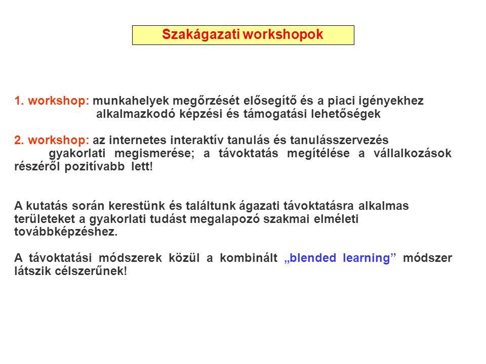 1. workshop: munkahelyek megőrzését elősegítő és a piaci igényekhez alkalmazkodó képzési és támogatási lehetőségek 2. workshop: az internetes interakt