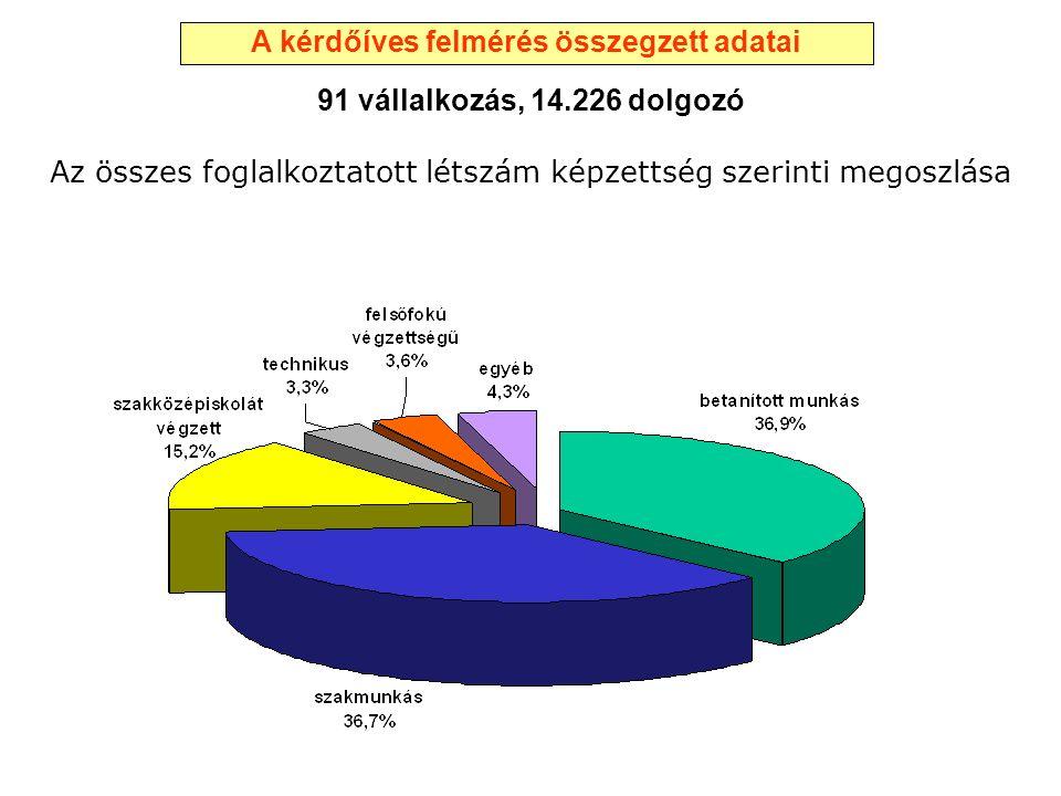 Az összes foglalkoztatott létszám képzettség szerinti megoszlása 91 vállalkozás, 14.226 dolgozó A kérdőíves felmérés összegzett adatai