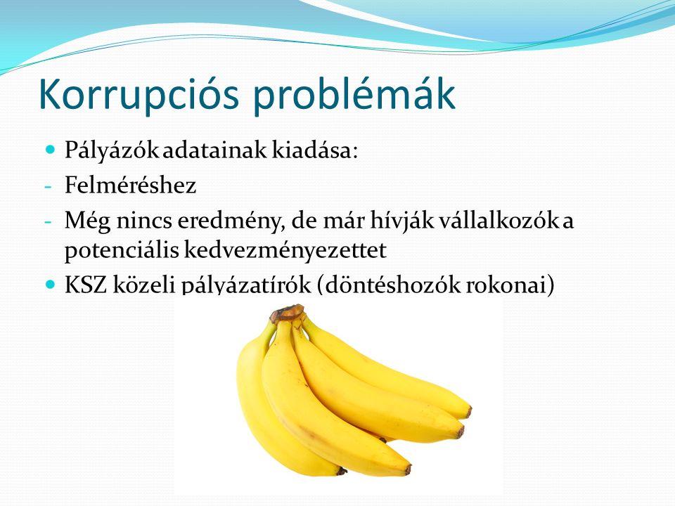 Korrupciós problémák Pályázók adatainak kiadása: - Felméréshez - Még nincs eredmény, de már hívják vállalkozók a potenciális kedvezményezettet KSZ közeli pályázatírók (döntéshozók rokonai)