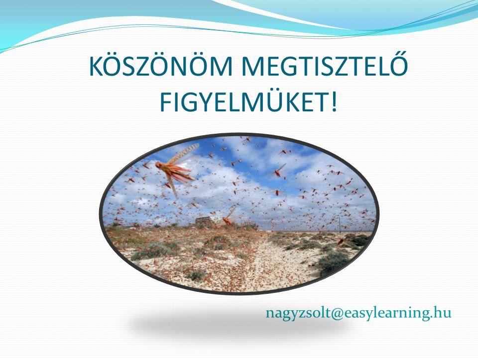 KÖSZÖNÖM MEGTISZTELŐ FIGYELMÜKET! nagyzsolt@easylearning.hu