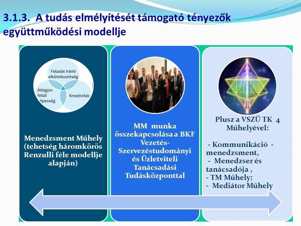 Menedzsment Műhely (tehetség háromkörös Renzulli féle modellje alapján) MM munka összekapcsolása a BKF Vezetés- Szervezéstudományi és Üzletviteli Tanácsadási Tudásközponttal Plusz a VSZÜ TK 4 Műhelyével: - Kommunikáció - menedzsment, - Menedzser és tanácsadója, - TM Műhely; - Mediátor Műhely 3.1.3.