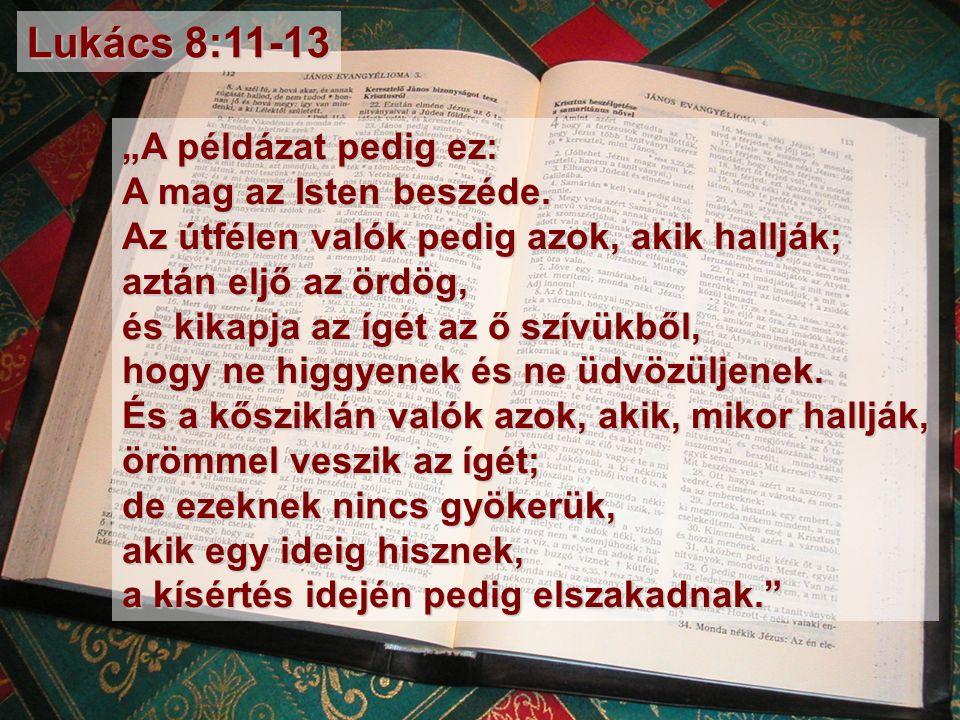 """""""A példázat pedig ez: A mag az Isten beszéde."""