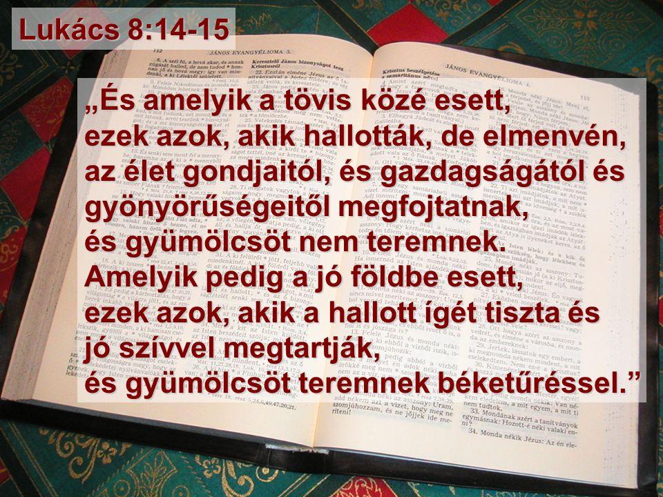 """""""És amelyik a tövis közé esett, ezek azok, akik hallották, de elmenvén, az élet gondjaitól, és gazdagságától és gyönyörűségeitől megfojtatnak, és gyümölcsöt nem teremnek."""