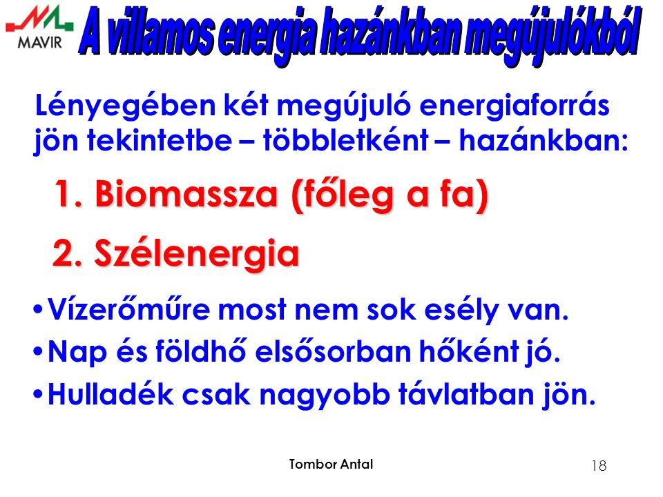 Tombor Antal 18 Lényegében két megújuló energiaforrás jön tekintetbe – többletként – hazánkban: 1.Biomassza (főleg a fa) 2.Szélenergia Vízerőműre most nem sok esély van.