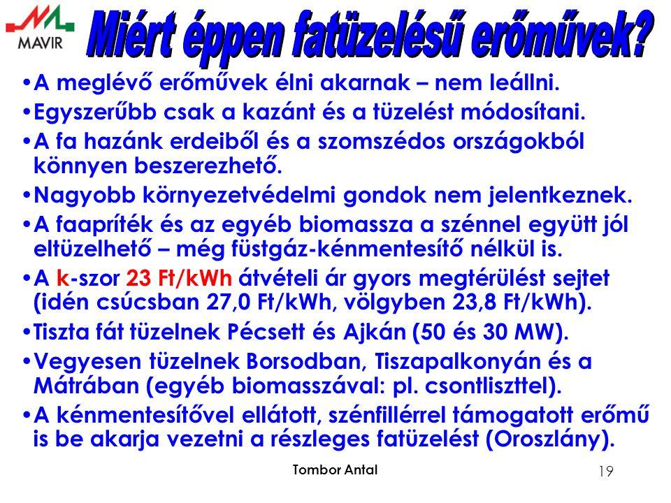 Tombor Antal 19 A meglévő erőművek élni akarnak – nem leállni.